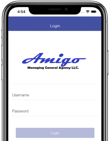 amigo mobile app login